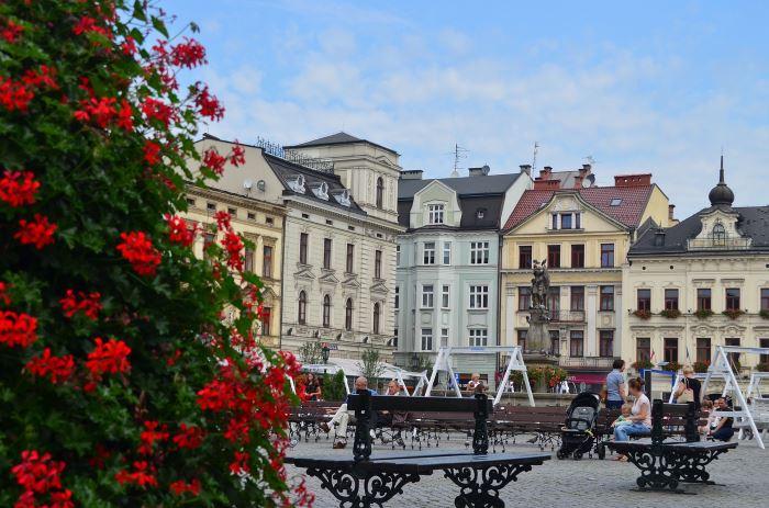 UM Cieszyn: Zarządzenie Nr 0050.25.2021  Burmistrza Miasta Cieszyna  z dnia 13 stycznia 2021 roku
